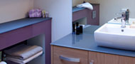 Bathroom Work Surfaces & Mirrors